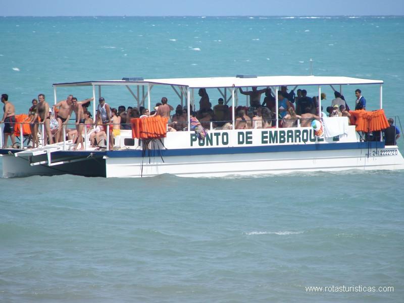 Passeio s piscinas naturais de maragogi maragogi brasil for Piscinas naturales maragogi