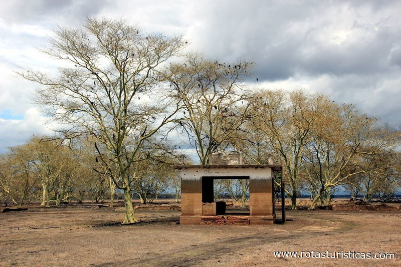 Casa De Leoes casa dos leões - parque nacional da gorongosa, vila de gorongosa